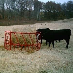 Heavy Duty Hay Rings
