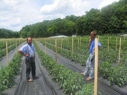 Sam Beachey Produce Lobelville TN